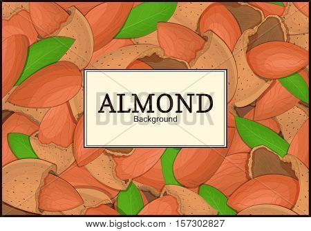 The rectangular frame on almond nut background. Vector card illustration. Nuts frame, almonds fruit in the shell, whole, shelled, leaves appetizing looking for packaging design of healthy food, menu
