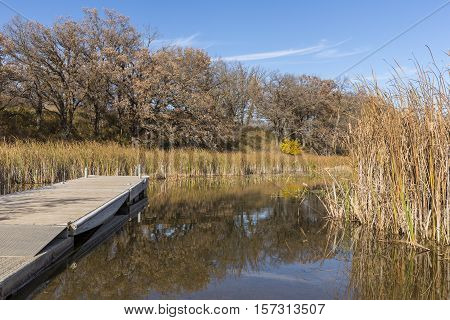 A boat dock on a swampy lake in autumn.