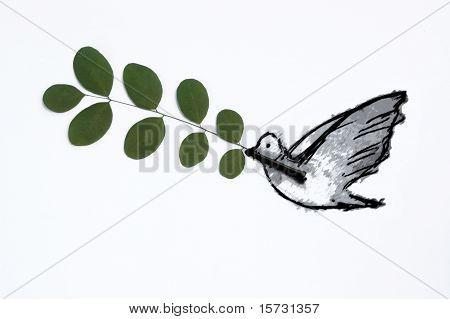 peace pigeon