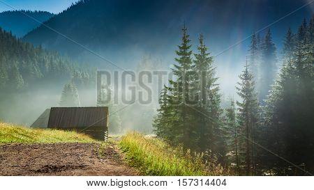 Stunning Sunrise In Valley Chocholowska, Tatra Mountains In Poland