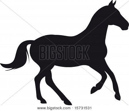 horse silhouette vector