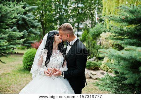 Glamourus Wedding Couple Kissed On Garden Of Pine Trees.