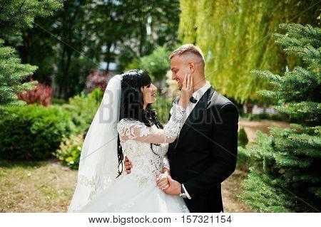 Glamourus Wedding Couple On Garden Of Pine Trees.