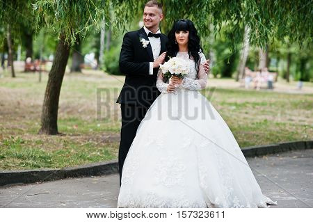 Delectable Wedding Couple Stay Hugging On Park Background Willow Tree.