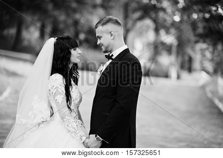 Delectable Wedding Couple Stay Hugging On Park. Black And White Photo