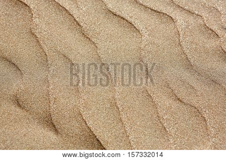 Background texture of sand dune. Outdoor background