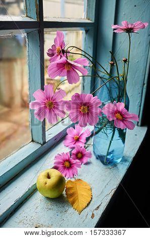 Flowers apple and autumn leaf on the old windowsill