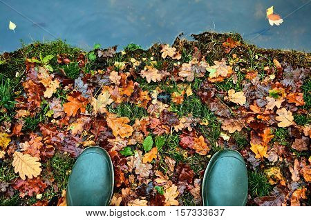 Toes of green rubber waterproof boots in Autumn or Fall standing on the leafy bank of a river canal or lake