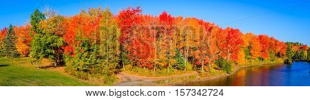 Changing colours in Autumn, Moncton, New Brunswick, Canada