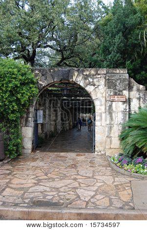Alamo Side Entry