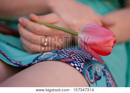 Pink tulip in the left woman hand. Girl in green dress holding a flower.