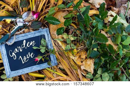 Vintage Garden love words written on gardening autumn background with dried leaves of lilies and and autumns last rose buds  preparing the garden for winter season card or postcard with copy space