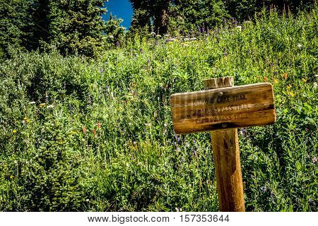 Wooden sign carved with arrows and directions along the Arapahoe Pass Trail in the Colorado Rockies