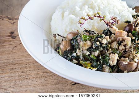 Thai food rice topped with stir-fried minced pork and basil and barometer earthstar
