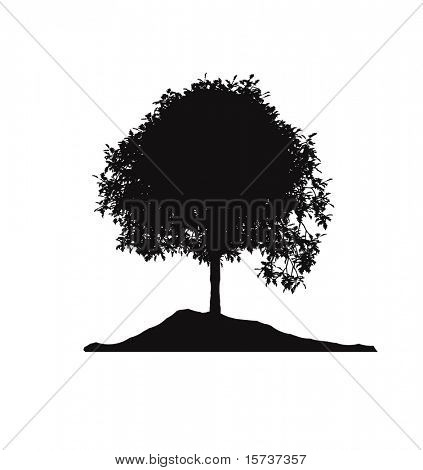 lonely tree silhouette poster