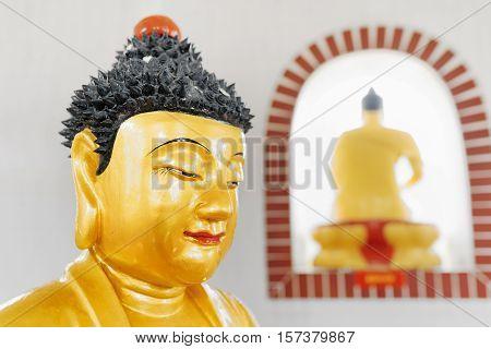 HONG KONG - FEBRUARY 1 2015: Closeup view of Golden Buddha statue in the pagoda of the Ten Thousand Buddhas Monastery (Man Fat Tsz). Hong Kong is popular tourist destination of Asia.