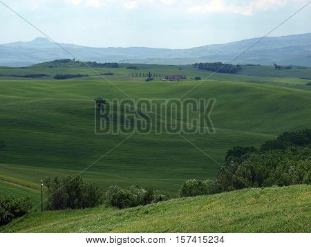 The landscape of the Val d'Orcia in Tuscany. Italy