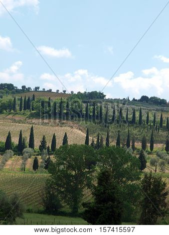 The hills surrounding Abbey   in Tuscany. Italy