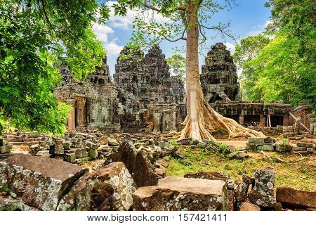 Ruins Of Ta Prohm Temple Nestled Amongst Rainforest In Angkor