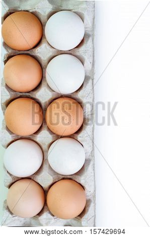 brown and white egg isolated on white background