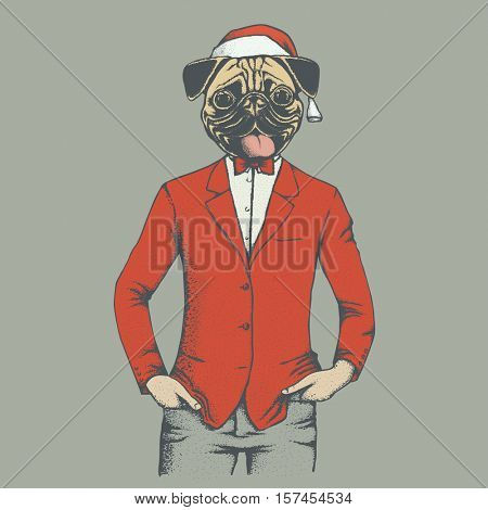 Pug dog vector illustration Christmas costume. Pug dog in human suit and Santa hat