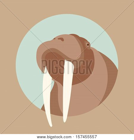 walrus head  face  vector illustration style Flat