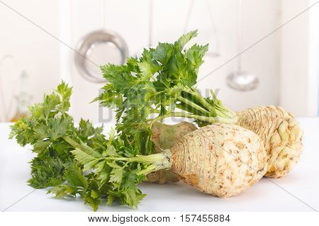 Fresh celery with root leaf in a kitchen