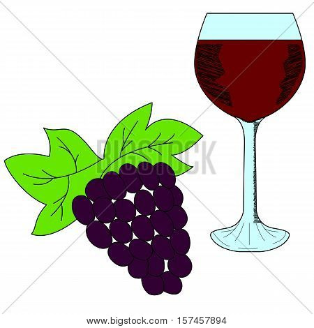 Bunch of grapes and wineglass. Hand drawn illustration in sketch style.