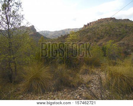 panorámica de montañas y cielo azul con vegetación