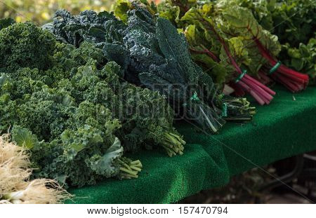 Bushels of organic kale grown on a farm and displayed at a farmers market