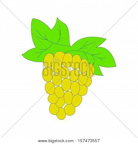 Grape hand drawn sketch. Illustration of grapes bunch on branch with leaves. Part of set of fruits sketchy drawings