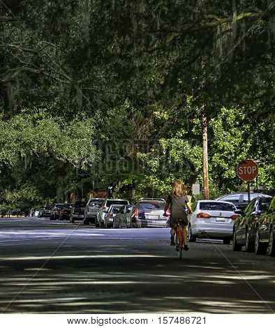 View down a car  lined  street in Savannah USA with large live oak trees overhanging the street and a girl riding a red push bike.