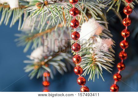 Snow covered christmas tree branch with a string of red beads in soft focus
