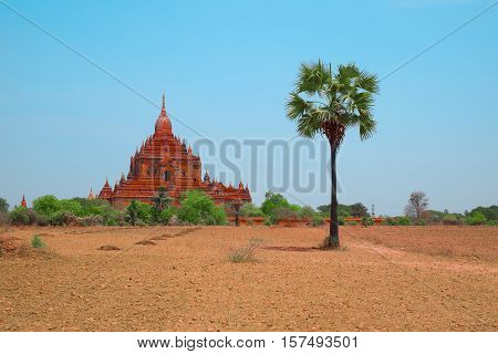 Ancient Gubyaukgyi Temple in Bagan Myanmar Southeast Asia. Beautiful old Buddhist pagoda Myinkaba Village Nyaung U Burma. Most popular and famous burmese landmark tourist destination of Myanmar