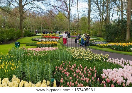 LISSE NETHERLANDS - APRIL 17 2016: Unknown tourists enjoying the beautiful blooming tulips in the famous keukenhof gardens