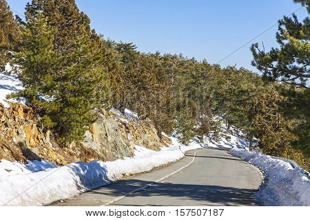 Winter Road In Troodos Mountains, Cyprus