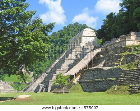 Pyramid Maya In The Jungle, Palenque, Mexico