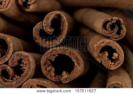 Close Up Of Cut End Of Cinnamon Sticks