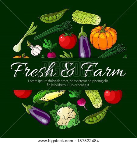 Vegetable round symbol, composed of fresh farm tomato, green onion, eggplant, corn and radish, pea, chinese cabbage and garlic, pumpkin, cauliflower and asparagus. Vegetarian food and organic farming design
