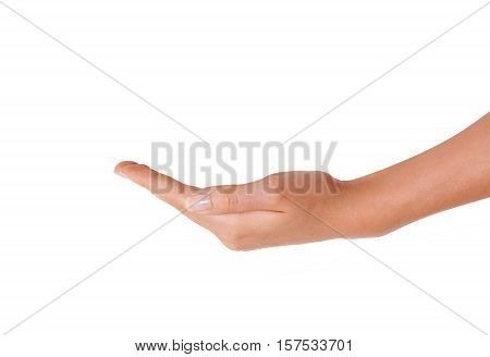 Empty Hand of Young Woman Waiting for something to Hold on white Background