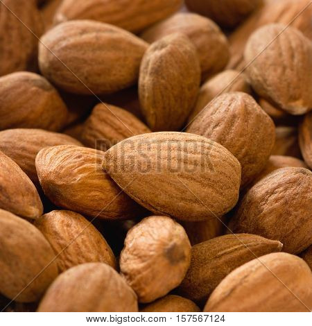 Almonds close-up, color image, square image, background