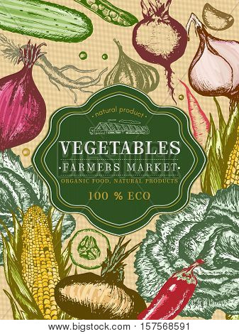 Vegetable vintage poster. Fresh vegetables template. Eco food. Farmers market. Vintage retro vegetables cover. Vegetables hand drawn vector