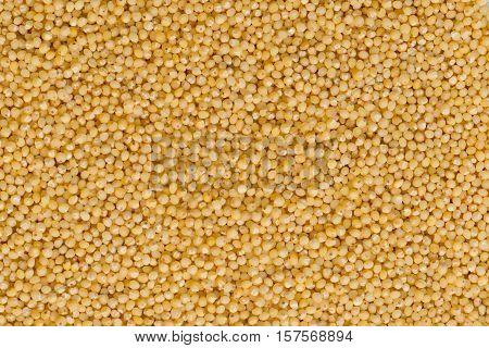 Hulled millet background, color image, horiozntal image, background