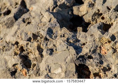The porous volcanic soil, a beautiful natural material.