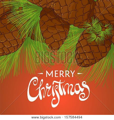 Conifer cones on a beautiful background with the words Merry Christmas
