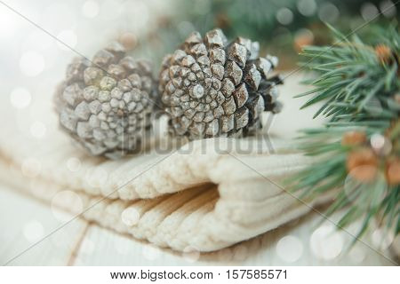 Winter composition with fir branches and cones on the white knitted hat.Selective focus