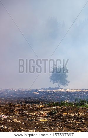 During the fire at the solid waste landfill.