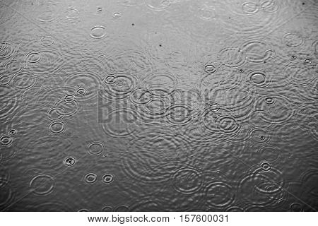 Rain drops falling on clear water. Black-white background photo.