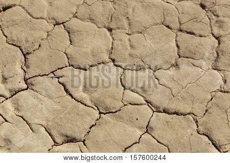 A closeup of an arid, cracked, desert floor