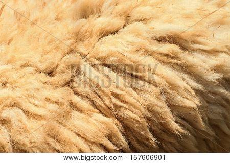 Brown fleece texture, Brown fleece background, fleece texture